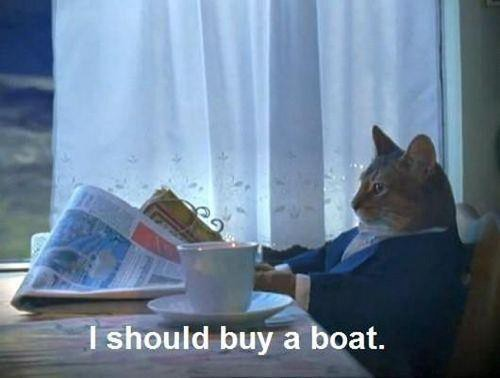 i-should-buy-a-boat-funny-mr-kitty-wealthy-gentleman